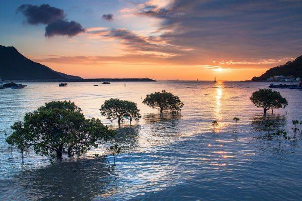 tai-o-sunset-credit-jessica-li